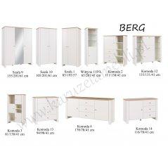Elementy systemu BERG