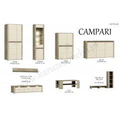 Elementy systemu CAMPARI