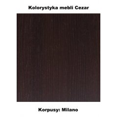 kolorystyka mebli Cezar
