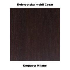 kolorystyka mebli Cezar milano